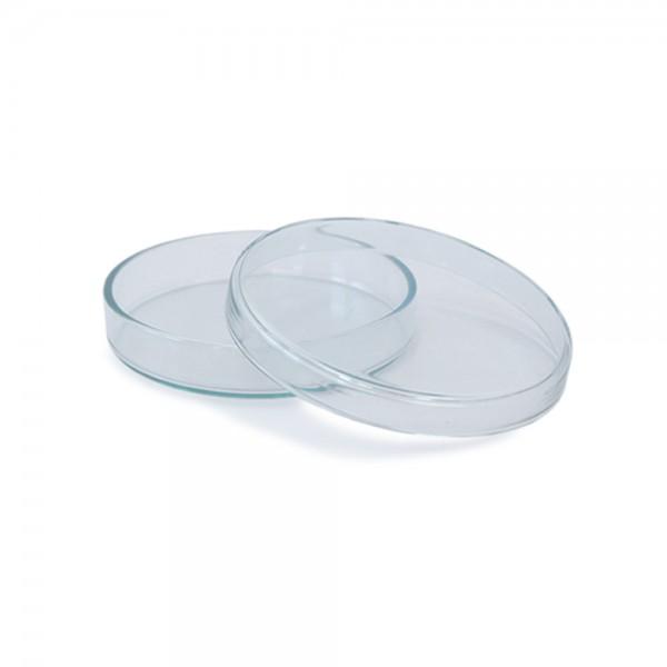 Petrischale 90x15 aus Glas