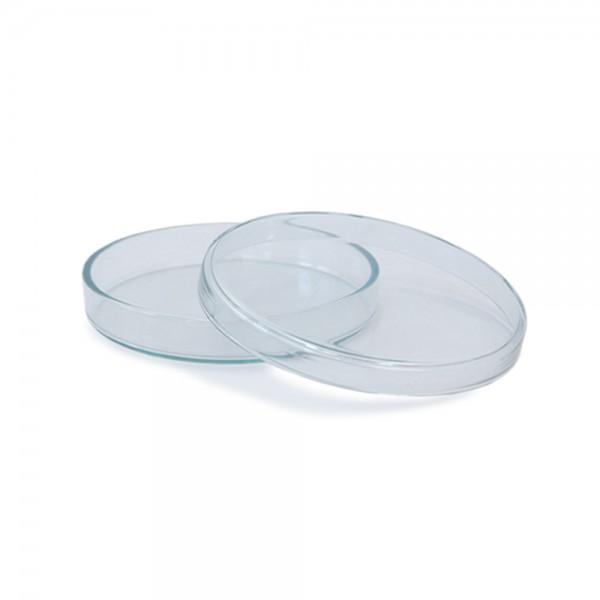 Petrischale 100x10 aus Glas