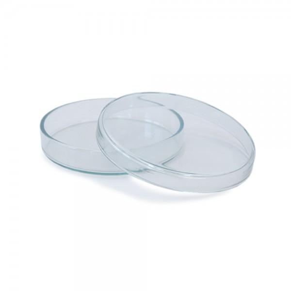 Petrischale 100x20 aus Glas