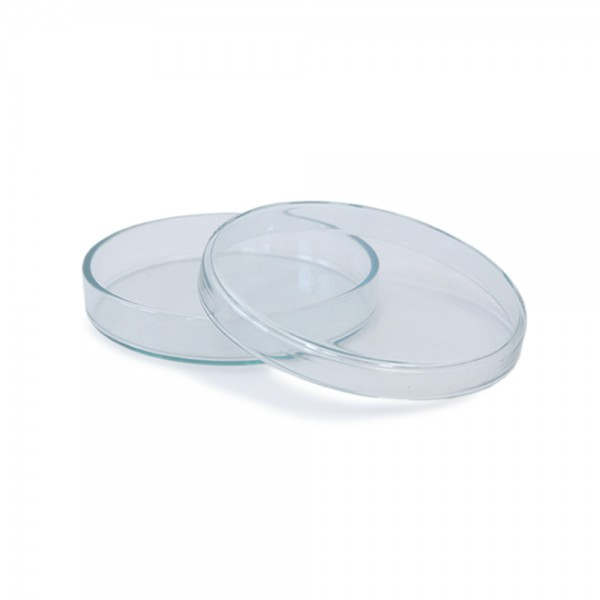 Petrischale 100x15 aus Glas